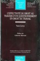 EFFECTIVITE DU DROIT AU TRAVERS D'UN QUESTIONNEMENT EN DROIT DU TRAVAIL, T.528 (L')